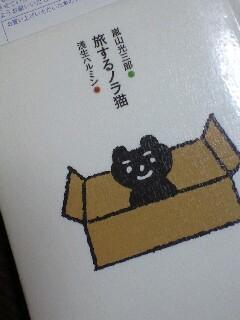 旅するノラ猫
